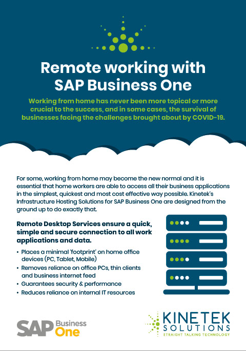 Remote working with SAP business one